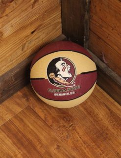 FSU Mini Basketball-0