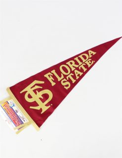 FSU Interlocking FS Pennant-0