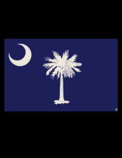 Palmetto Flag Decal-0