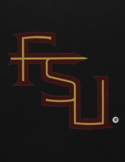 FSU Interlocking FSU-0