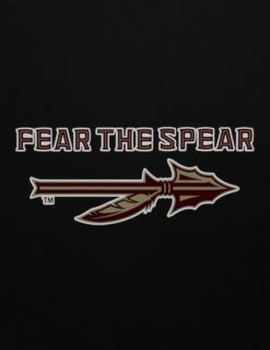 FSU FEER THE SPEAR Decal-0