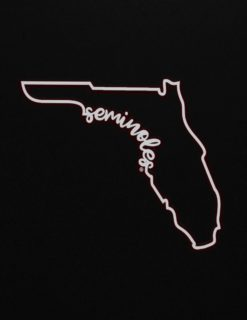 FSU Seminoles State Script Decal-0