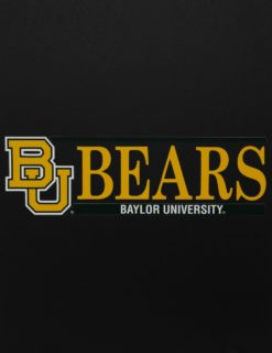 BU Bears w/ Primary Logo-0