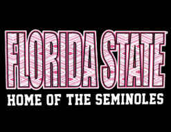 FSU Florida State Home of the... -0