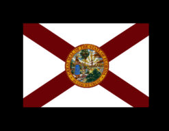 State of Florida Flag Decal-0