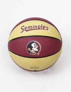 FSU Ally Oop Basketball-0