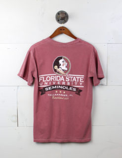 FSU Holes in my Florida-0