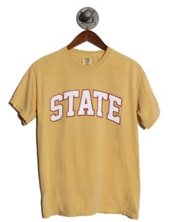 ISU STATE-0