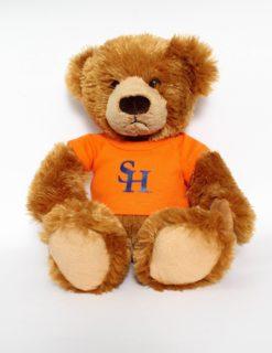 SHSU Plush Bear w/ Tee-0