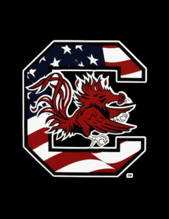 USC Gamecock American Flag Decal-0