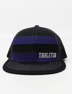 TSU Tarleton Punk-0